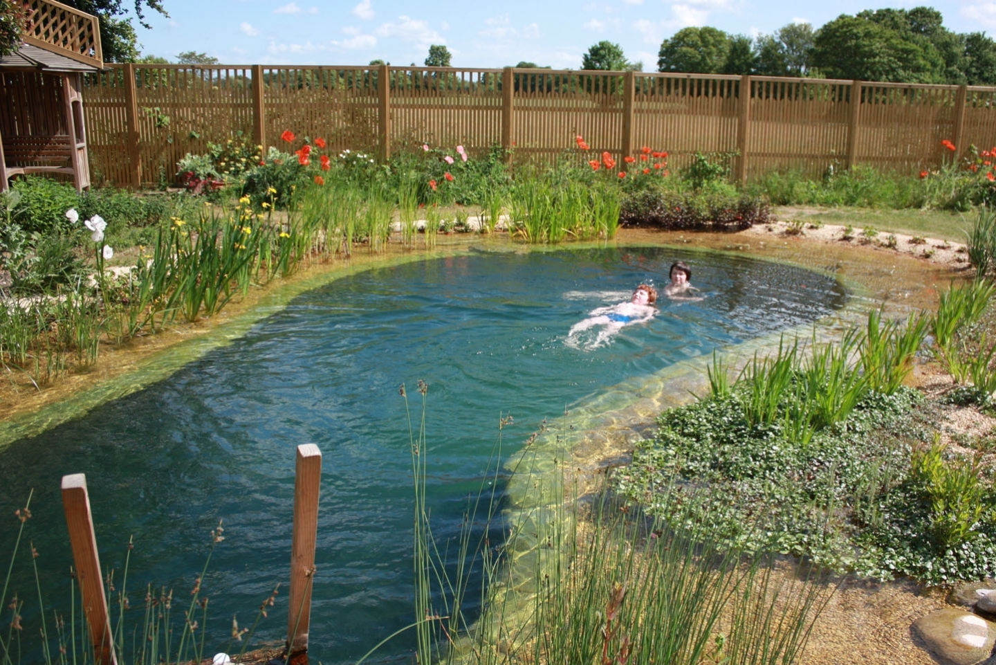 Gartenart | Portfolio | Swimming pond, Cambridgeshire