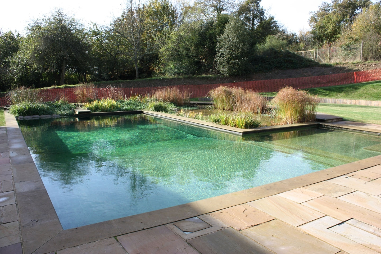 Gartenart | Portfolio | Natural Swimming Pool, Berkshire