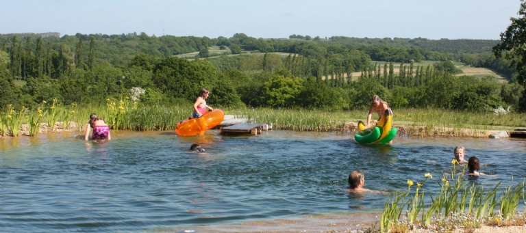 Swimming pond open days and exhibitions