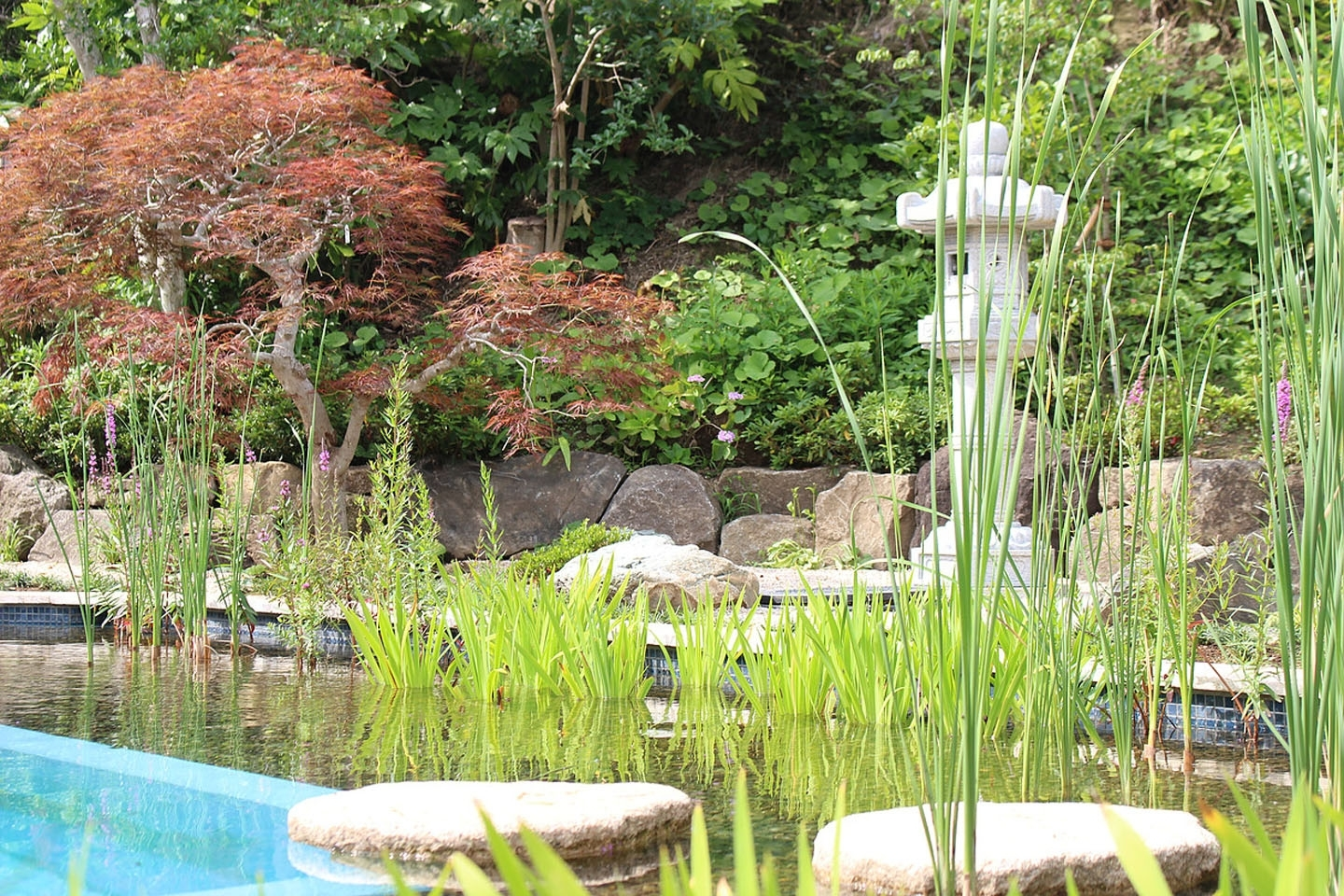 Gartenart | Portfolio | Natural pool, Japan